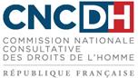 Logo CNCDH Comission Nationale Consultative des droits de l'homme